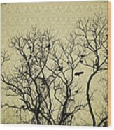Blackbirds Roost Wood Print