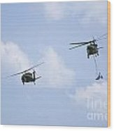 Blackhawk Sling Load Wood Print