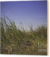 Blades Of Grass Wood Print
