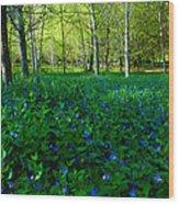 Blanket Of Flowers Wood Print