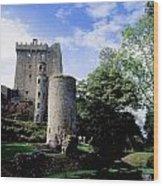 Blarney Castle, County Cork, Ireland Wood Print