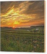 Blazing Countryside Wood Print