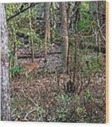 Blending Deer Wood Print