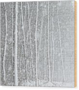 Blizzard Blankets Trees In Snow Wood Print