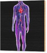 Blood Circulation System Wood Print