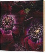 Blood Red Anemones Wood Print