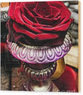 Blood Rose In The Window Wood Print