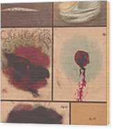 Bloodstain, Blisters, Bullet Holes, 1864 Wood Print by Science Source
