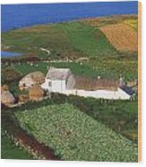 Bloody Foreland, Co Donegal, Ireland Wood Print