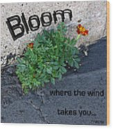 Bloom Where The Wind Takes You Wood Print