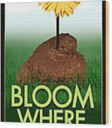 Bloom Where You Are Planted Poster Wood Print