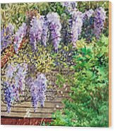Blooming Wisteria Wood Print by Peter Sit