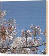 Blossom 4 Wood Print