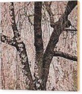 Blossom Rain Wood Print by Deborah  Crew-Johnson