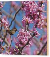 Blossoming Bird Wood Print