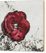 Blotted Rose Wood Print