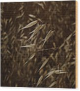 Blowin' In The Wind Wood Print