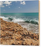 Blowing Rocks Jupiter Island Florida Wood Print by Michelle Wiarda