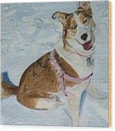 Blue - Siberian Husky Dog Painting Wood Print