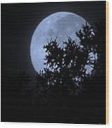 Blue August Wood Print