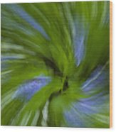 Blue Bells Vortex 3 Wood Print