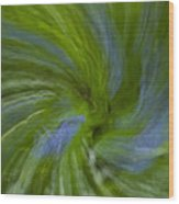 Blue Bells Vortex 4 Wood Print