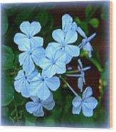 Blue Blossoms Wood Print