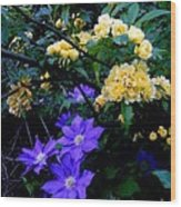 Blue Clematis With Yellow Lady Banks Rose Wood Print