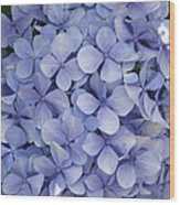 Blue Cluster Wood Print
