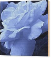 Blue Delight Wood Print
