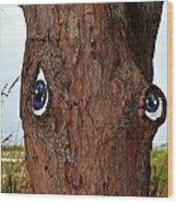 Blue Eyed Pine Wood Print
