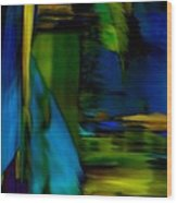 Blue Feather Reflections Wood Print