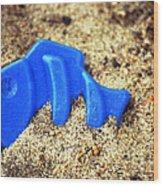 Blue Fish Swims In Sand Sea Wood Print