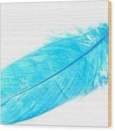 Blue Goose Wood Print