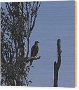 Blue Gray Wood Print