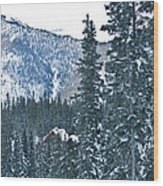 Blue Green Mountain Wood Print
