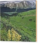 Blue Grouse Pass, Willmore Wilderness Wood Print