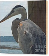 Blue Heron 2 Wood Print