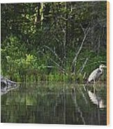 Blue Heron Long Pond Wmnf Wood Print