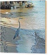 Blue Heron On The Beach Wood Print