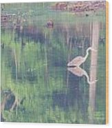 Blue Heron6 Wood Print