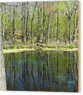 Blue Hole Springs Florida Wood Print