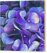 Blue Hydrangeas Wood Print
