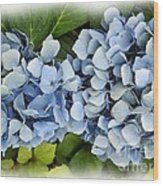 Blue Hydrangeas With Watercolor Effect Wood Print