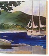 Blue Interlude Wood Print by Don F  Bradford