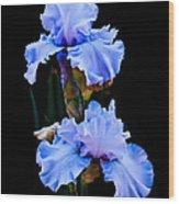 Blue Iris Wood Print