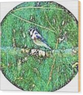 Blue Jay 8 Wood Print