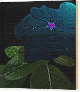 Blue Jean Impatient Wood Print