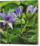 Blue Lilies Wood Print