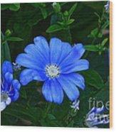 Blue Magic Wood Print by Byron Varvarigos